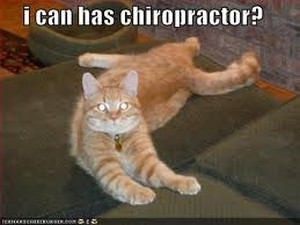 Chiropractic Continuing Education, Chiropractic CE, Chiropractic CEU